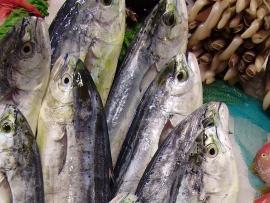 llampuga-raones-navajas - Pescados Carmen – Pescado Fresco y Marisco - Palma de Mallorca