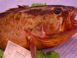 pescados_carmen_4