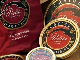 ECXCLUSIF- L esturgeonniere, le caviar d Aquitaine - Pescados Carmen – Pescado Fresco y Marisco - Palma de Mallorca