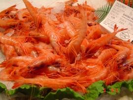 gambas-marisco-mallorquin - Pescados Carmen – Pescado Fresco y Marisco - Palma de Mallorca